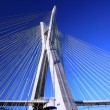 Cable-stayed bridge sao paulo Brazil - Stock Photo