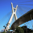 Cable-stayed bridge sao paulo Brazil — Stock Photo