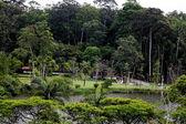 Lake Park carmo sao paulo Brazil — Stock Photo