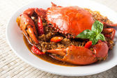 Chili crab — Stock Photo