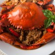 Chili crab — Foto de Stock