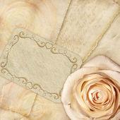 Vacker bakgrund rose och bokstäver — Stockfoto