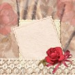 Greetings card with rose and lace — Stock Photo