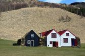 Traditional icelandic Turf Houses near Skógar — Stock fotografie
