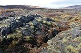 Vulkanische lava aan de ijsland — Stockfoto