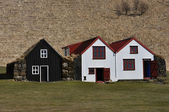 Overgrown Old Typical Rural Icelandic houses open air museum — Stock Photo