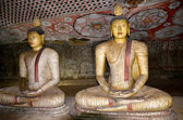 Statue of Buddha in Cave Temple in Dambulla Sri Lanka — Stock Photo