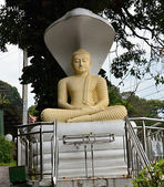Statue o Buddha in Sri Lanka — Stock Photo
