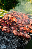 Meat pieces cooking on brazier — Stock Photo