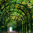 Light at the end of nature tunnel - Stock Photo