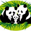 Stock Vector: Family PandBears