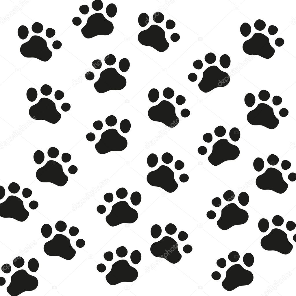 Cerdo Para Colorear Also Dinosaur Footprint Template Printable As Well