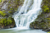 Waterfall stones rock ardennes bach river water running spring water rapids creek foam — Stock Photo