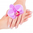 Well-groomed woman hands, french manicure with pink flower  — Stock Photo