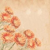 Retro flowers background — Stock Photo