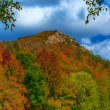 Pinnacle Mountain - Fall — Stock Photo