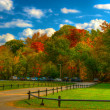 Pinnacle Mountain Park - Fall — Stock Photo