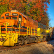 Freight Train Locomotive — Stock Photo
