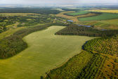 Aerial view above the green fields — Stock Photo
