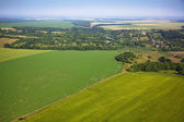 Aerial view of colza fields near the village — Stock Photo