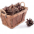 Basket with cones — Foto de stock #14991411