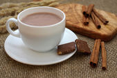 Hot chocolate and cinnamon sticks — Zdjęcie stockowe