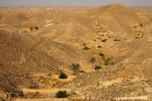 Mountain landscape in Tunisia, Africa — Stock Photo