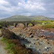 Stock Photo: Old bridge in Scotland