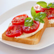 Bread with mozzarella tomatoes and basil — Stock Photo #12013577