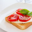 Bread with mozzarella tomatoes and basil — Stock Photo #12013756