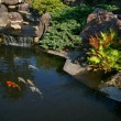 Japanese garden — Stock Photo #13674940