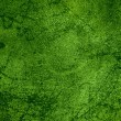 Green rust metal background — Lizenzfreies Foto