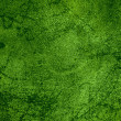 Green rust metal background — Stock Photo