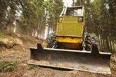 Bulldozer in forest — Stock Photo