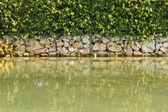 Water Wall — Stock Photo