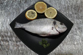 Bream background — Stock Photo
