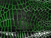 Dark alligator leather texture, can use as background — Stock Photo