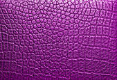 Crocodile violet leather, can use as background — Photo