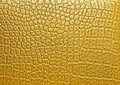 золото аллигатора узор фона — Стоковое фото