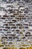 Tło ściany tekstury starych elewacji sekcji — Zdjęcie stockowe