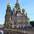 Stock Photo: St. Petersburg. cathedral of Spas on blood.