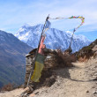 Nepal, trekking around Anapurna. Old village Giaru. — Stock Photo