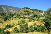 в предгорьях гималаев, непал — Стоковое фото