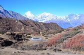 Nepal, vandring runt anapurna. — Stockfoto