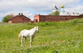 Panorama of Suzdal. Golden ring of Russia. — Stock Photo