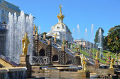 Fountains in the lower park of Petergof. — Stock Photo