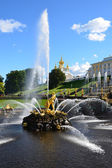 St. Peterburg, Russia, fountains in the lower park of Petergof, Samson. — Stock Photo