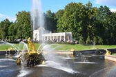 Fountains in the lower park of Petergof, Samson. — Stock Photo