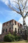 意大利奥斯塔,塔的 pailleron 中的古老的城市,15 世纪. — 图库照片