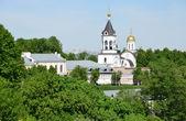 Bogoroditse rojdestvensky 在弗拉基米尔,12 世纪的修道院。俄罗斯金环. — 图库照片